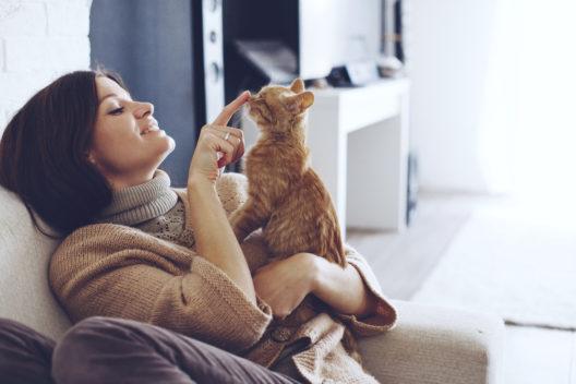 Die Katze rundum glücklich machen (Bild: Alena Ozerova - shutterstock.com)