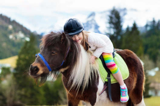 feature post image for Eine Tiershow zum Geburtstag