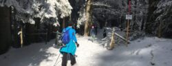 20210219_Schneeschuh