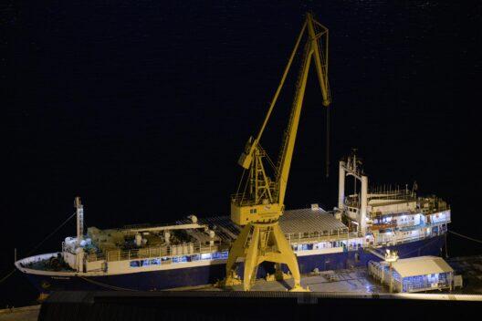 Tiertransportschiffe im Hafen von Cartagena, Spanien (Bild: © VIER PFOTEN | Aitor Garmendia)
